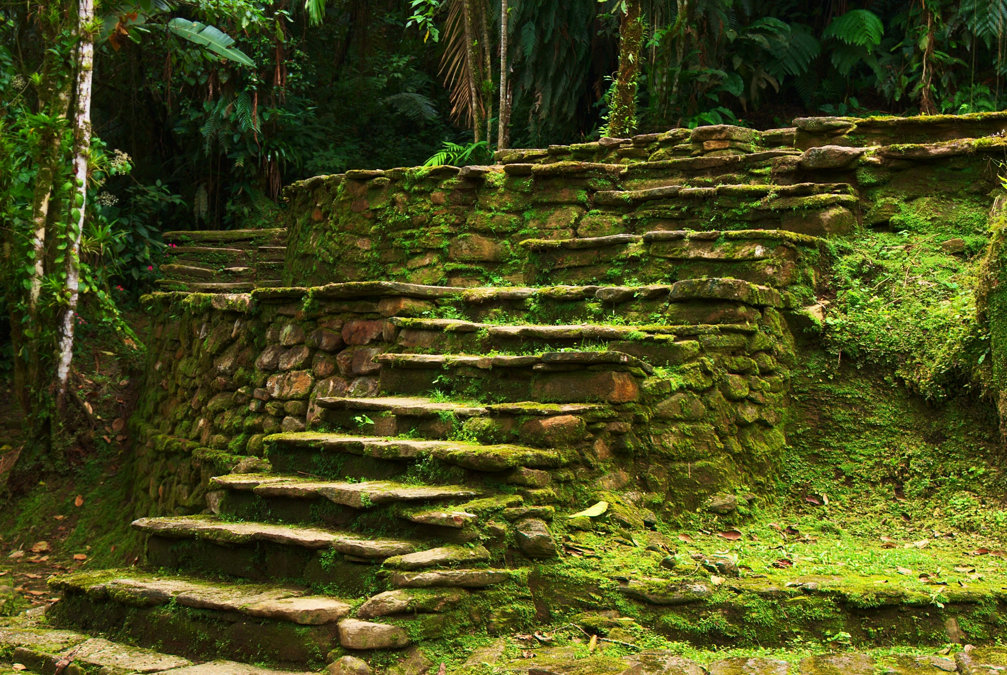 Old stone stairs leading to a terrace in Ciudad Perdida, built by the people of Tayrona. This archeological site is close to Santa Marta in Northern Colombia.